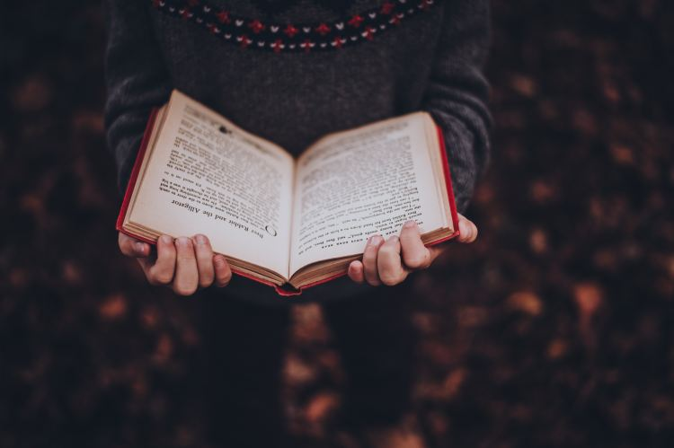 Book - Reading - Winter - Christmas - December - Dark.jpg